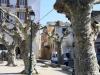 Korsika042014_004